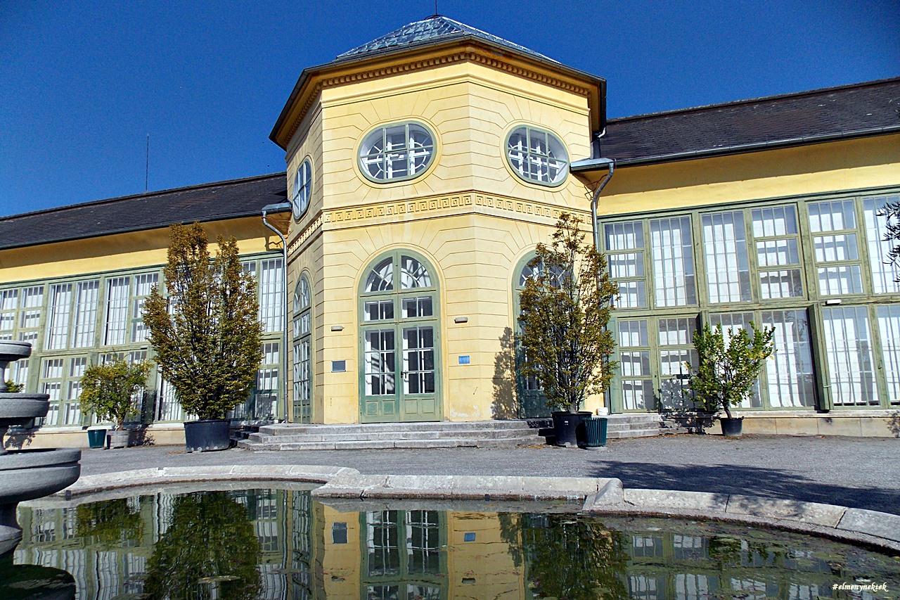 kismarton-eisenstadt-kastelypark-palmahaz-orangerie