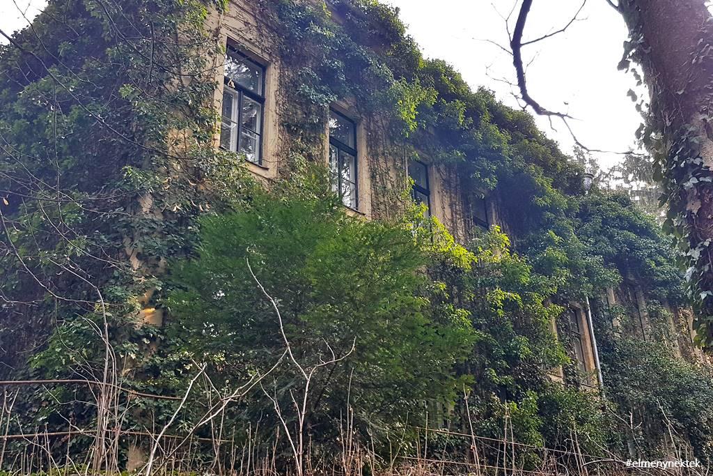 botanikus-kert-sopron