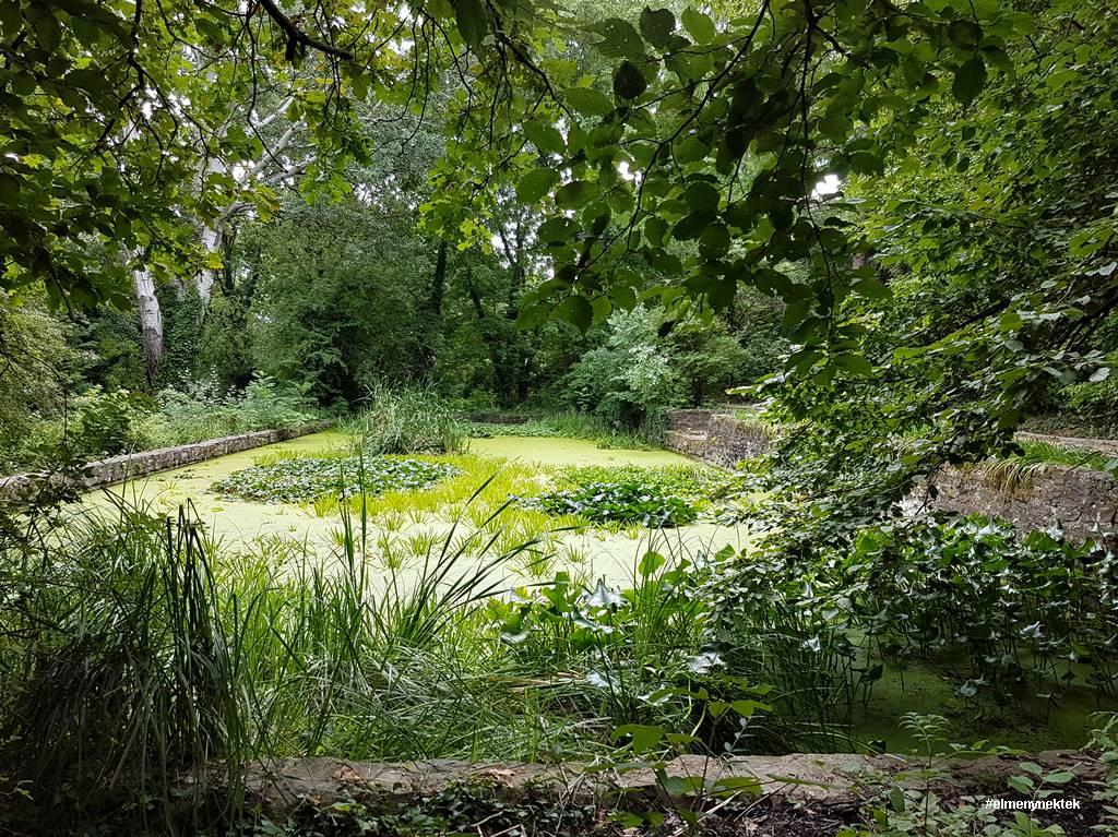 soproni-egyetem-botanikus-kert