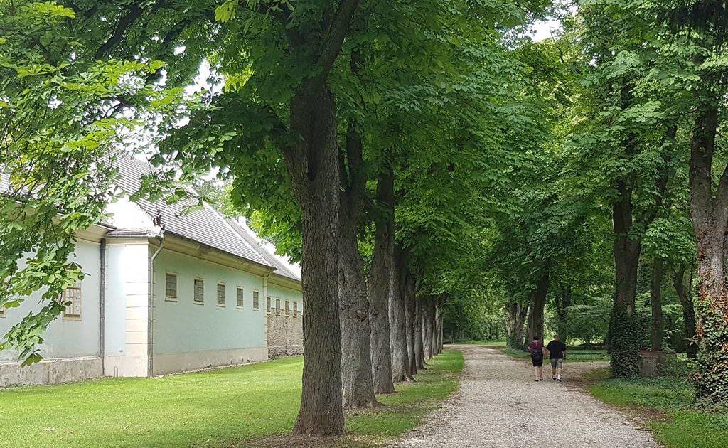 halbturn-feltorony-burgenland